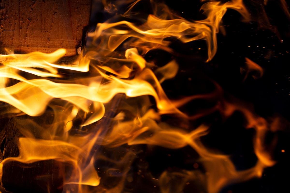 queima, carvão vegetal, ignição, quente, lenha, queimadura, fogueira, calor, lareira, flama