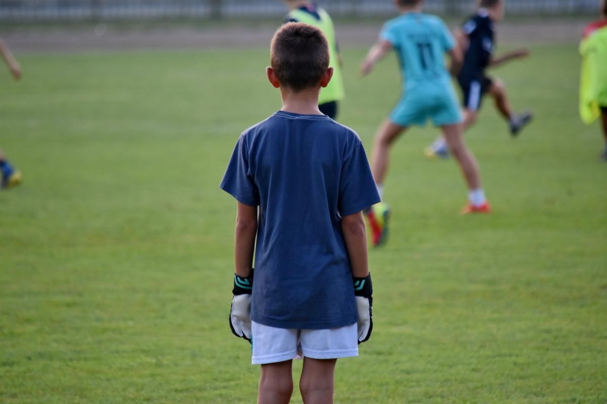 Чемпионат, дети, Конкурс, игрок футбола, Футбол, ребенок, мяч, трава, игрок, спортсмен