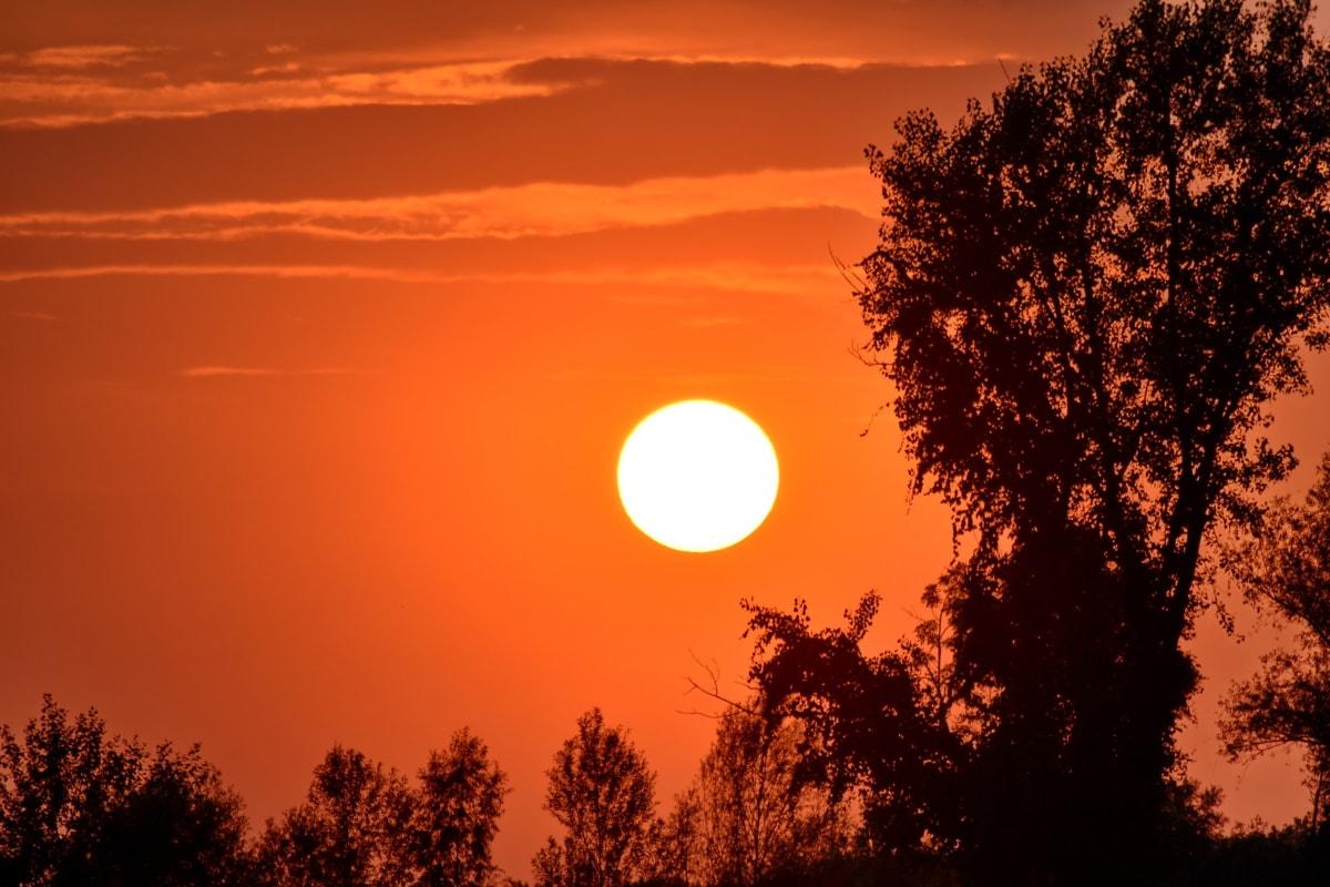 シャドウ, 太陽, 太陽光線, サンセット, つ星, 雲, ランドス ケープ, 夜明け, シルエット, 今晩