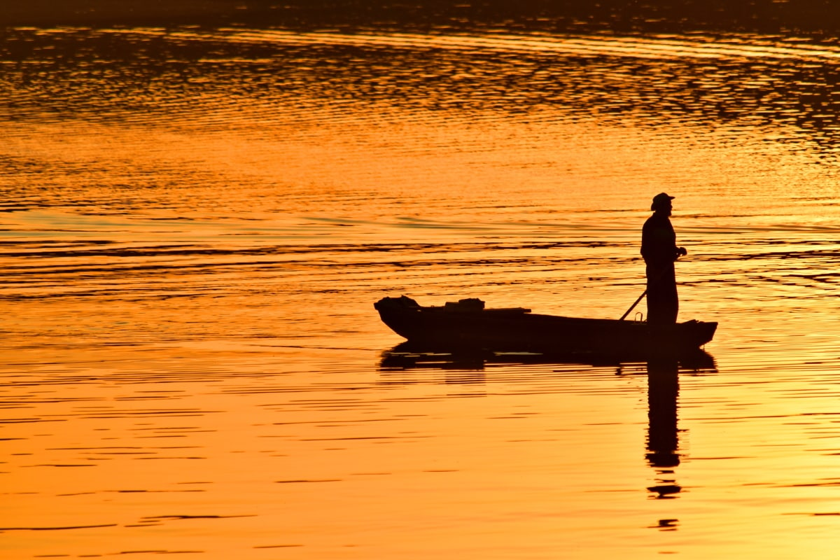 backlight, darkness, evening, fisherman, orange yellow, silhouette, sunset, dawn, reflection, paddle