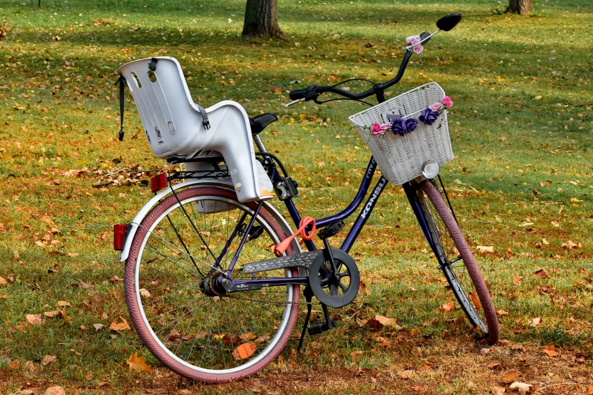 bicycle, decorative, forest, nostalgia, romance, wicker basket, grass, outdoors, summer, nature