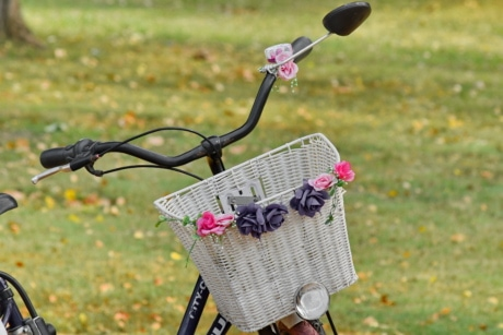 bicycle, park, romance, summer, wicker basket, outdoors, grass, nature, recreation, lawn