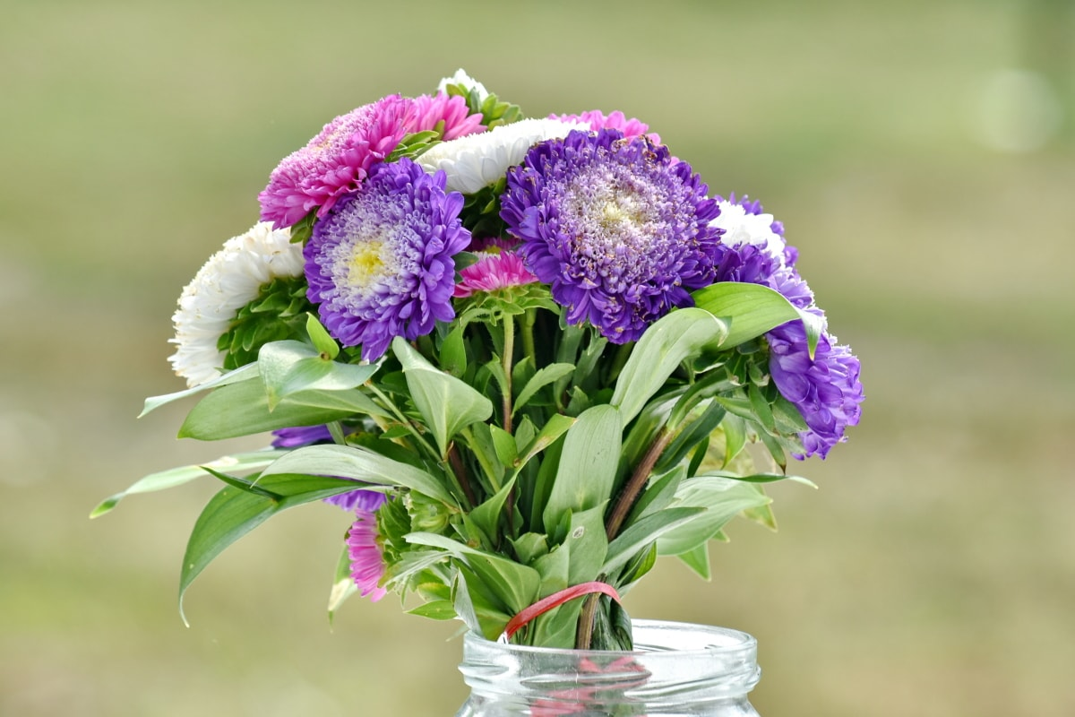 ρύθμιση, μπουκέτο, βάζο, Νεκρή φύση, παλιάς χρονολογίας, διακόσμηση, λουλούδια, φύση, λουλούδι, φυτό
