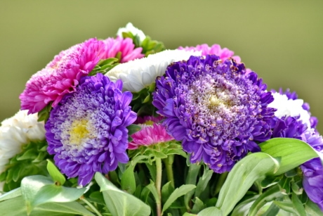 bouquet, flower, summer, flora, nature, leaf, garden, bright, petal, purple