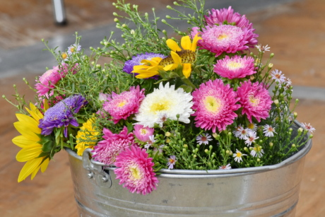bucket, decoration, flowers, metal, object, flora, summer, bouquet, flower, plant