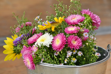 bucket, chamomile, chrysanthemum, decoration, flowers, romantic, arrangement, bouquet, summer, nature