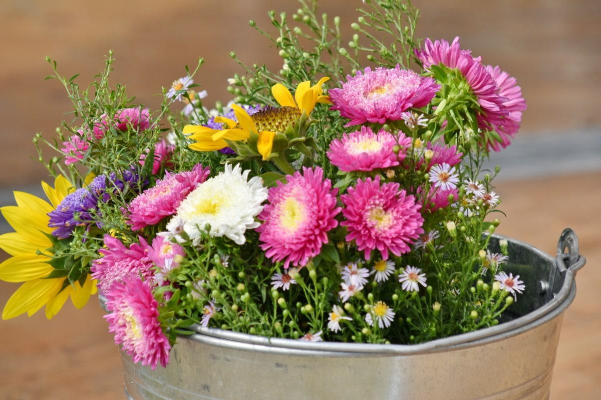 Подреждане, букет, кофа, слънчоглед, лято, цвете, природата, цветя, светъл, градина