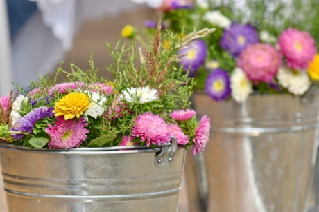 arrangement, bouquet, bucket, decoration, elegance, flowers, still life, flower, garden, blooming