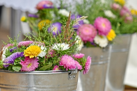 arrangement, bouquet, bucket, chrysanthemum, decoration, romantic, nature, flower, flowers, summer