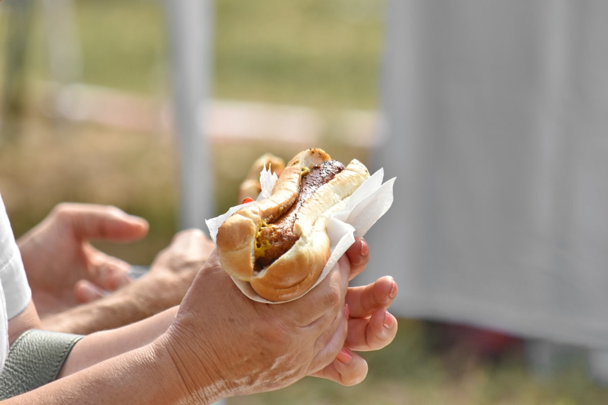 fast food, hands, picnic, sandwich, outdoors, summer, nature, food, lunch, hand