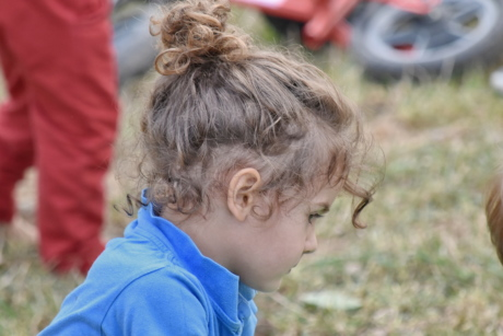 curl, hair, hairstyle, innocence, pretty, profile, child, nature, outdoors, cute