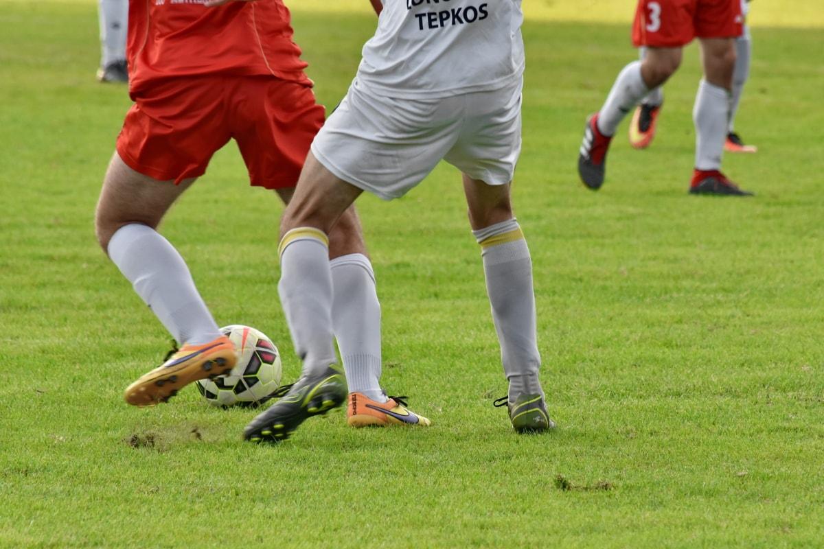 compétition, football, joueur de football, chaussures, herbe, jambes, ballon de soccer, football, lecteur, sport