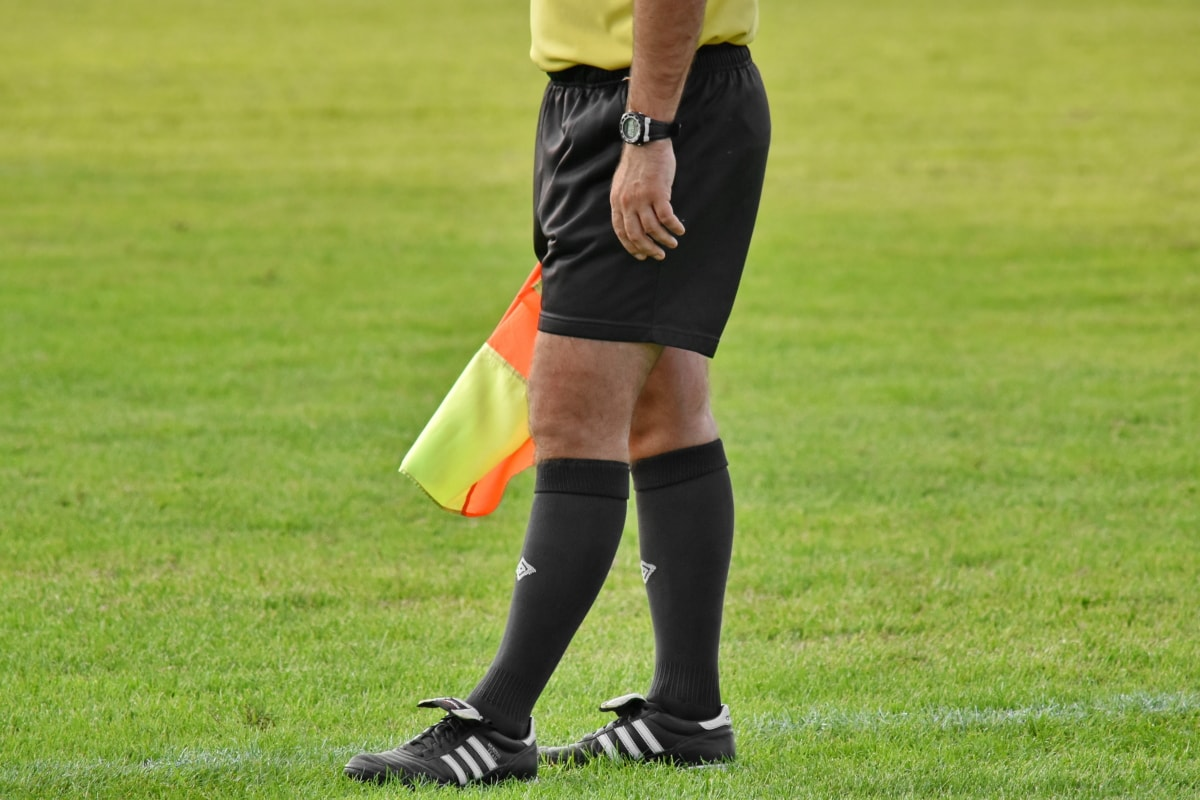 サッカー, 裁判官, 公式, スポーツ, トーナメント, 制服, 腕時計, 草, サッカー, 競争