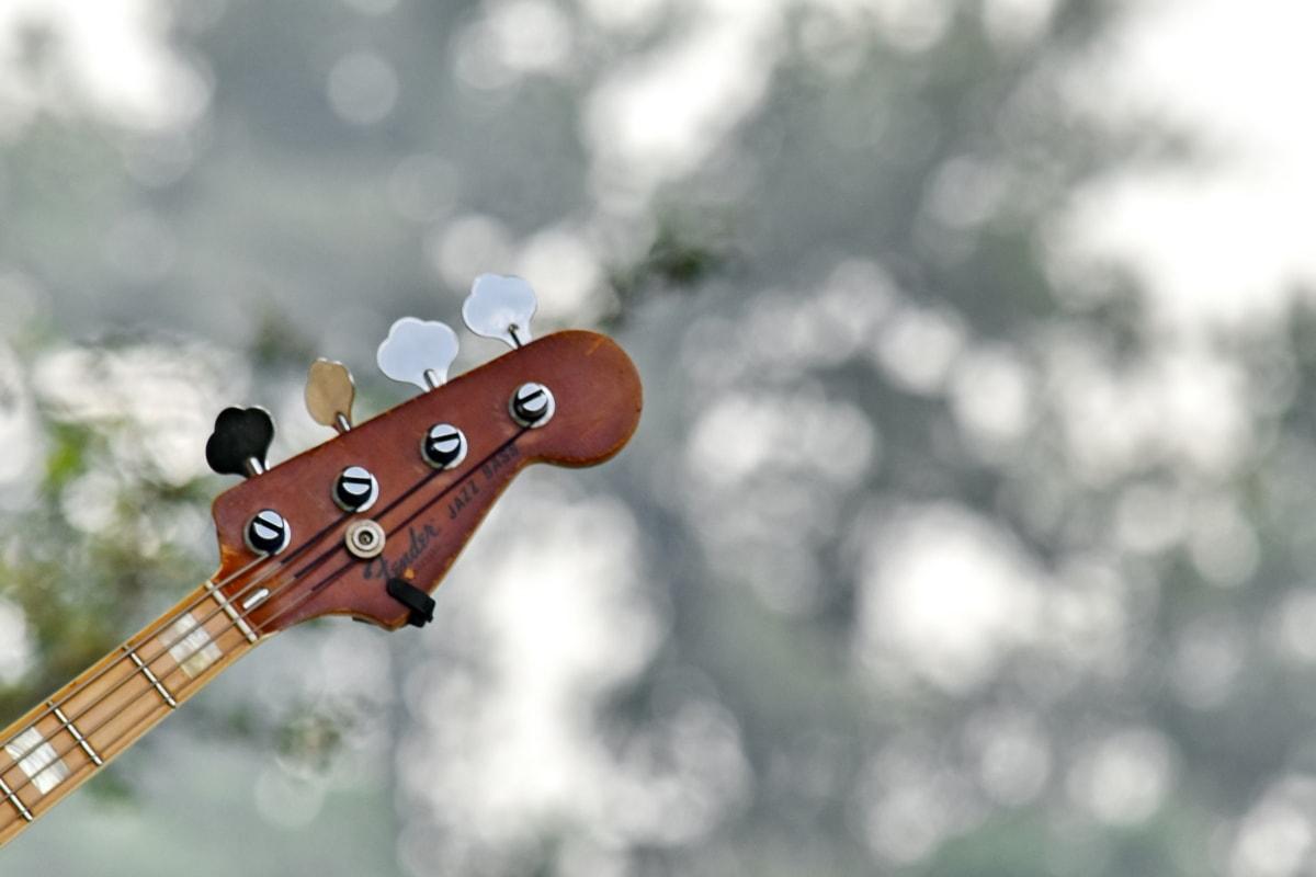 akustisk, gitar, musikk, natur, instrumentet, utendørs, kunst, klassisk, lyd, Blur