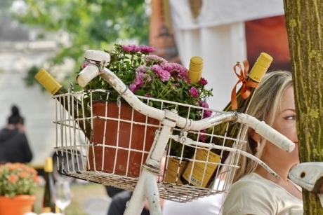 bicycle, blonde hair, bottles, flowerpot, picnic, pretty girl, promoter, red wine, vintage, basket