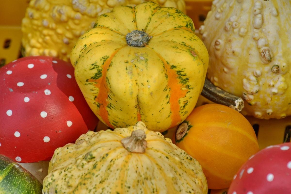 рынок, Товары, Тыква, урожай, Сквош, овощной, Осень, питание, Природа, питание