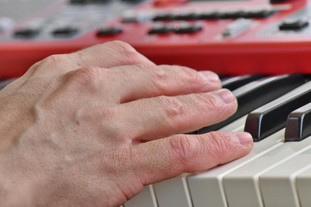 accordo, dito, punta delle dita, pianista, sintetizzatore, musica, mano, avorio, strumento, pianoforte