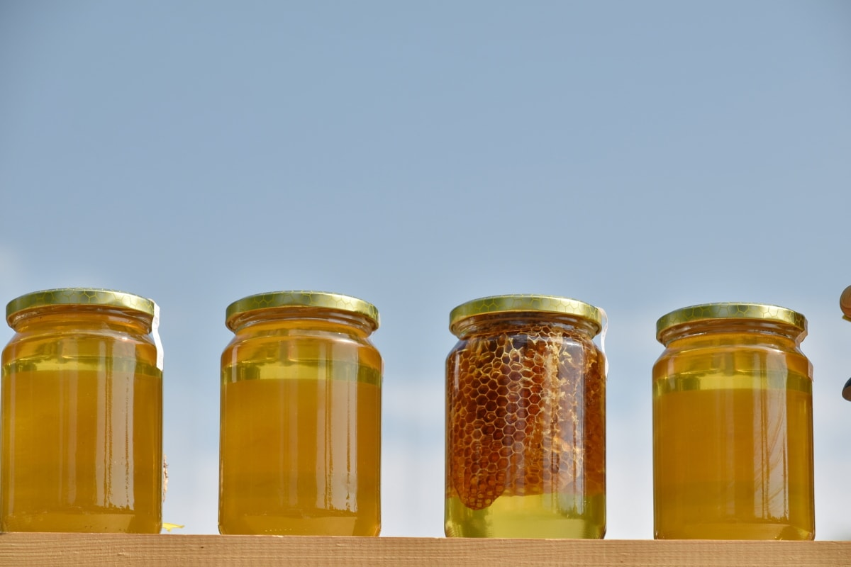 verre, pot, miel, santé, traditionnel, maison, conteneur, complet, été, nutrition