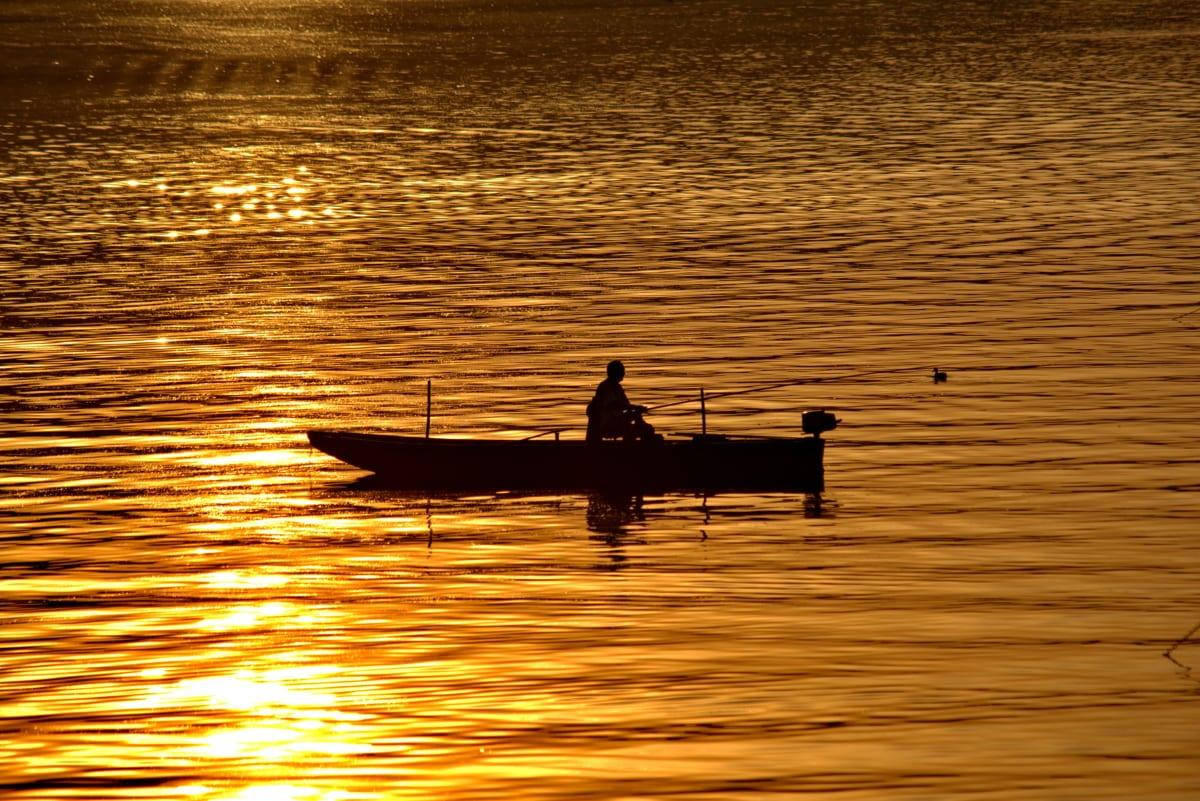 båt, fiskaren, gyllene glöd, Horisont, skugga, siluett, stranden, molnet, gryning, skymning