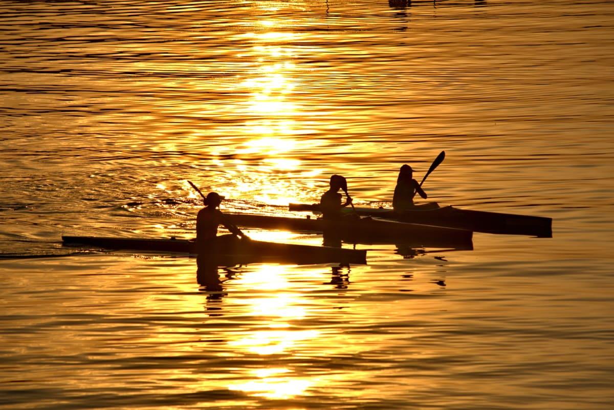 kano, glede, gyllen glød, rekreasjon, silhuett, sport, samarbeid, solnedgang, daggry, vann