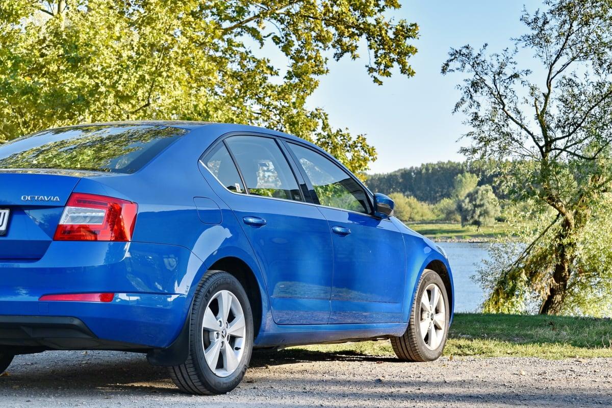 niebieski, zderzaka, Brzeg rzeki, Limuzyna, sezon letni, transport, pojazd, samochodowe, asfaltu, samochodu