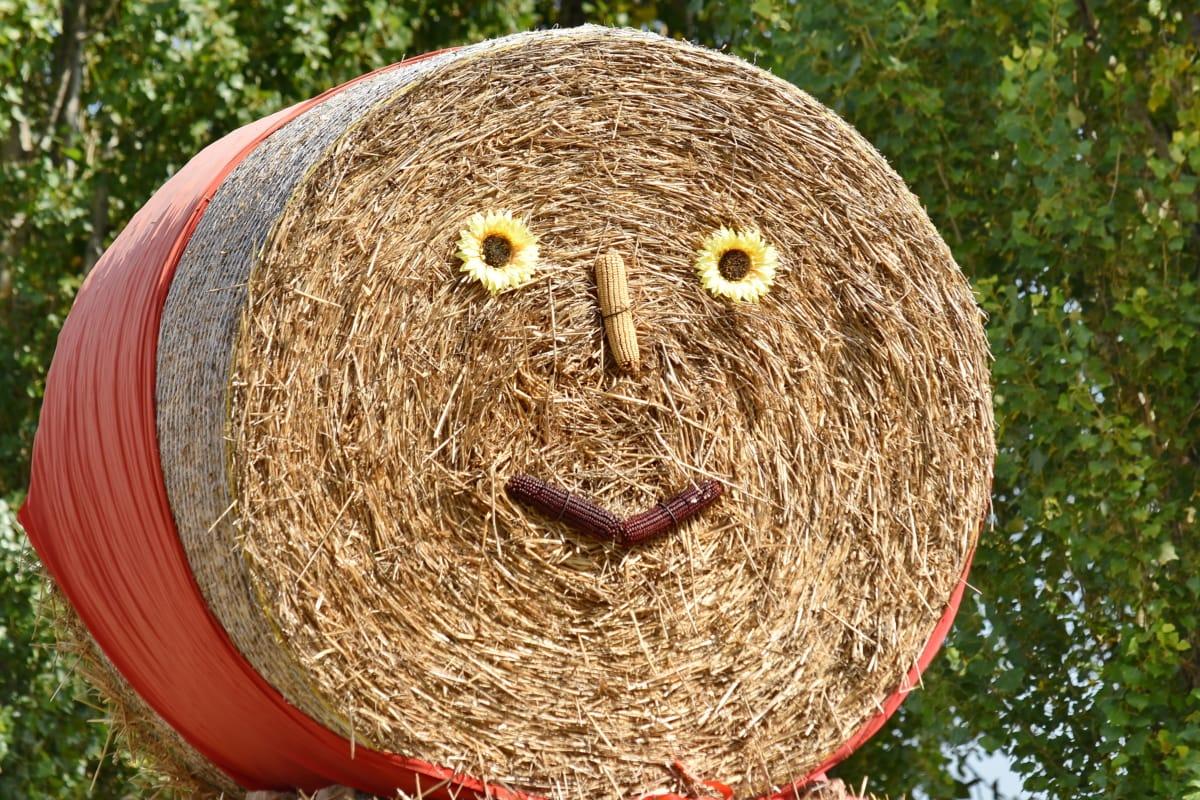 art, creativity, decoration, face, funny, hay, still life, farm, agriculture, rural