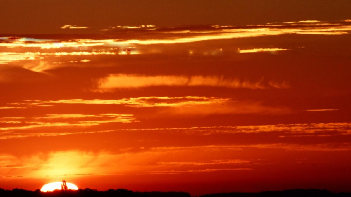 Χρυσή λάμψη, λάμψη του ουρανού, ηλιαχτίδες, Ήλιος, Ανατολή ηλίου, σύννεφα, αστέρι, το βράδυ, σούρουπο, σιλουέτα