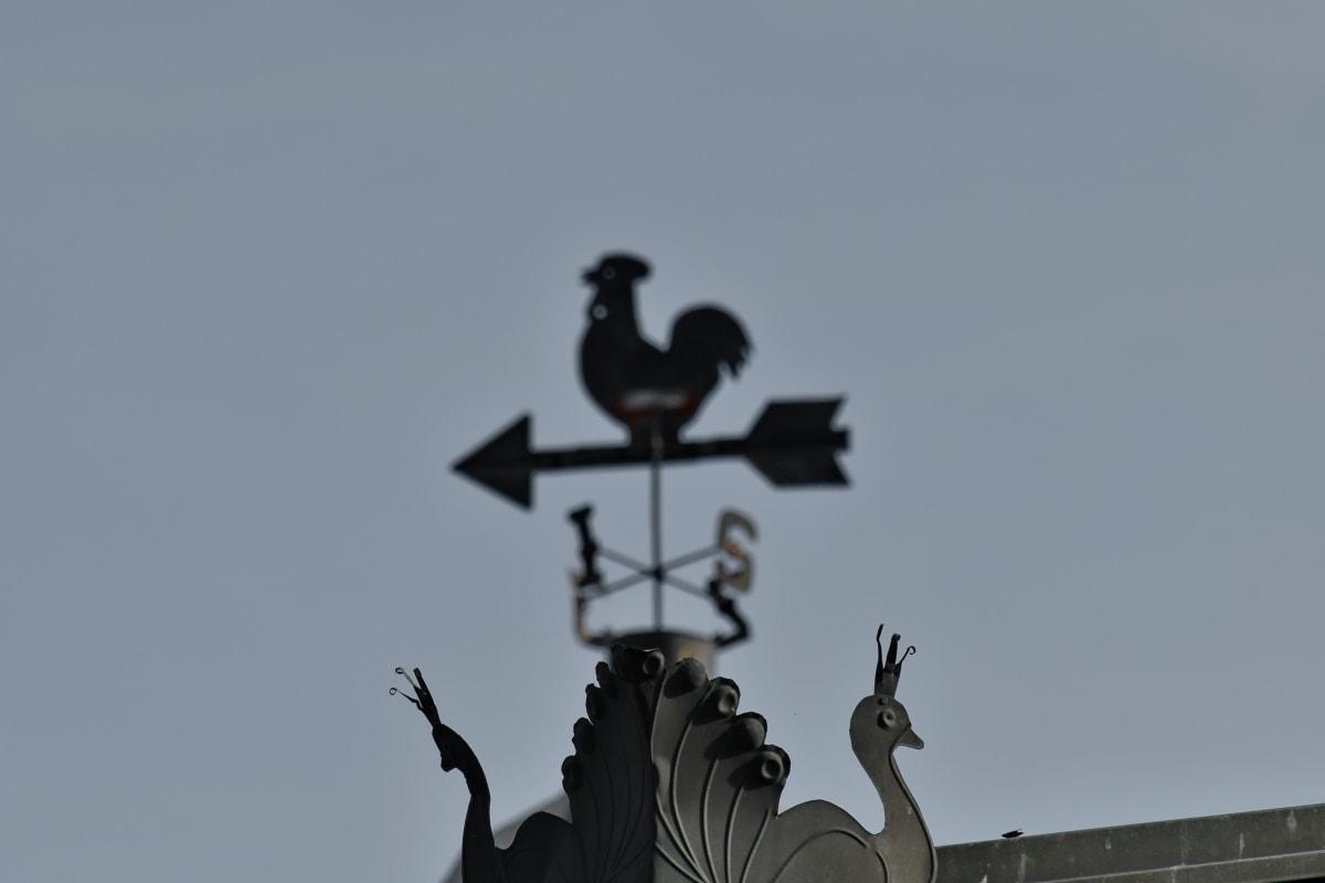 dekorasjon, håndlaget, jern, Metal, påfugl, taket, taket, enheten, fuglen, utendørs