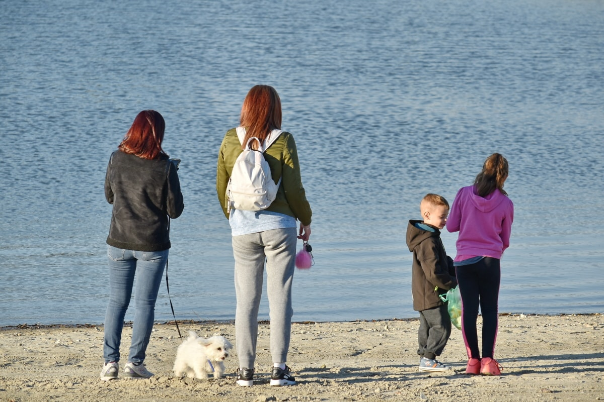 子供の頃, 子, 犬, ファミリ, リラクゼーション, 川岸, 一体感, 女の子, 女性, 愛