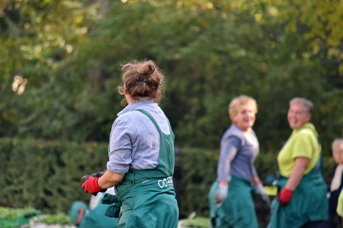 jardinier, jardinage, emploi, la plantation, travail en équipe, femmes, Loisirs, Parc, heureux, famille