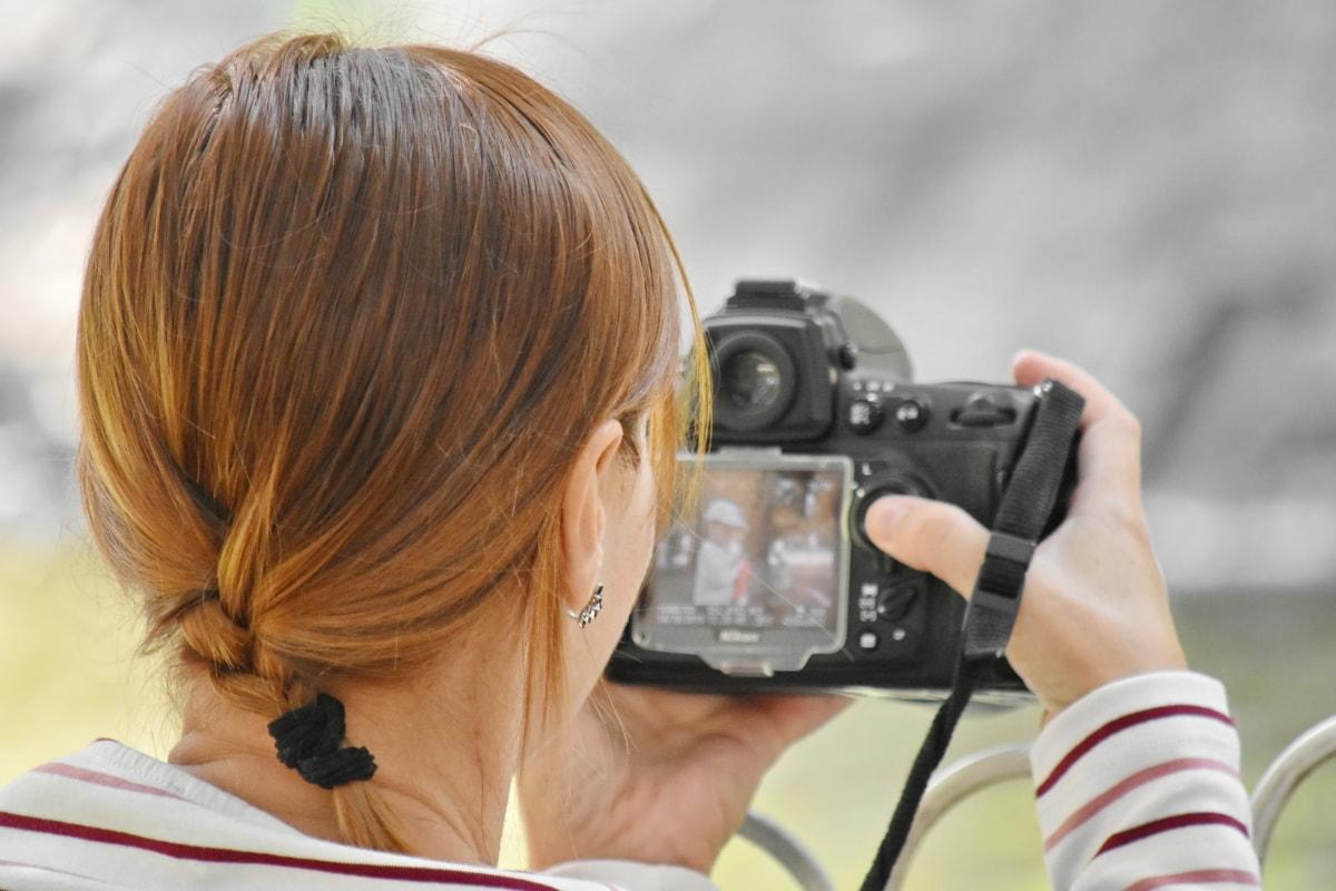 morettina, acconciatura, fotografo, fotoreporter, donna, apparecchiatura, lente, fotocamera, bella, natura