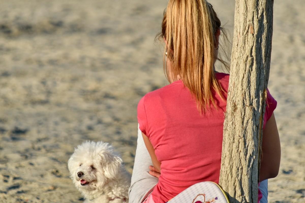 beach, enjoyment, pretty girl, relaxation, dog, pet, woman, leisure, outdoors, summer