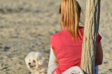 beach, enjoyment, pretty girl, relaxation, dog, pet, woman, leisure, outdoors, summer