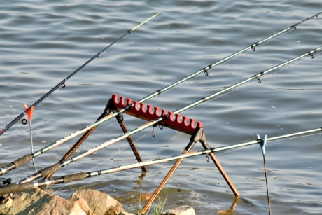 coastline, fishing gear, fishing rod, water, river, reflection, lake, nature, summer, sport