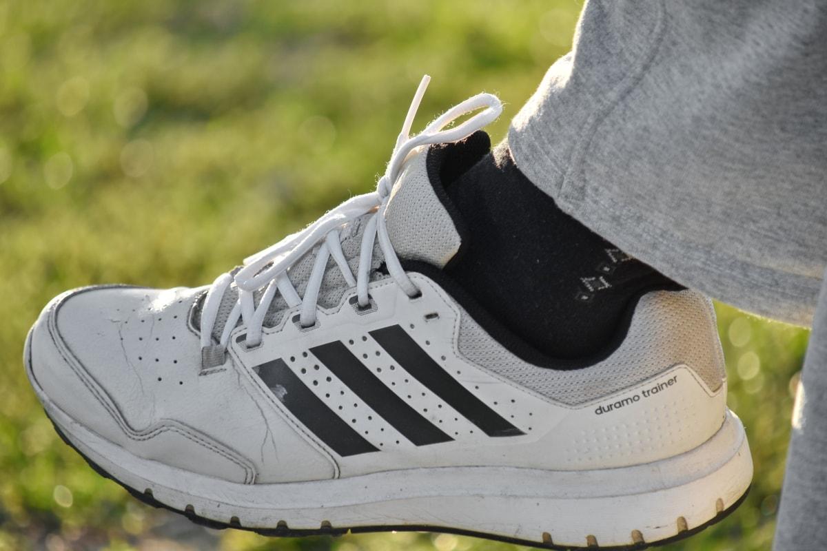 маратонки, обувки, кожа, крак, мода, на открито, спорт, класически, лято, отдих