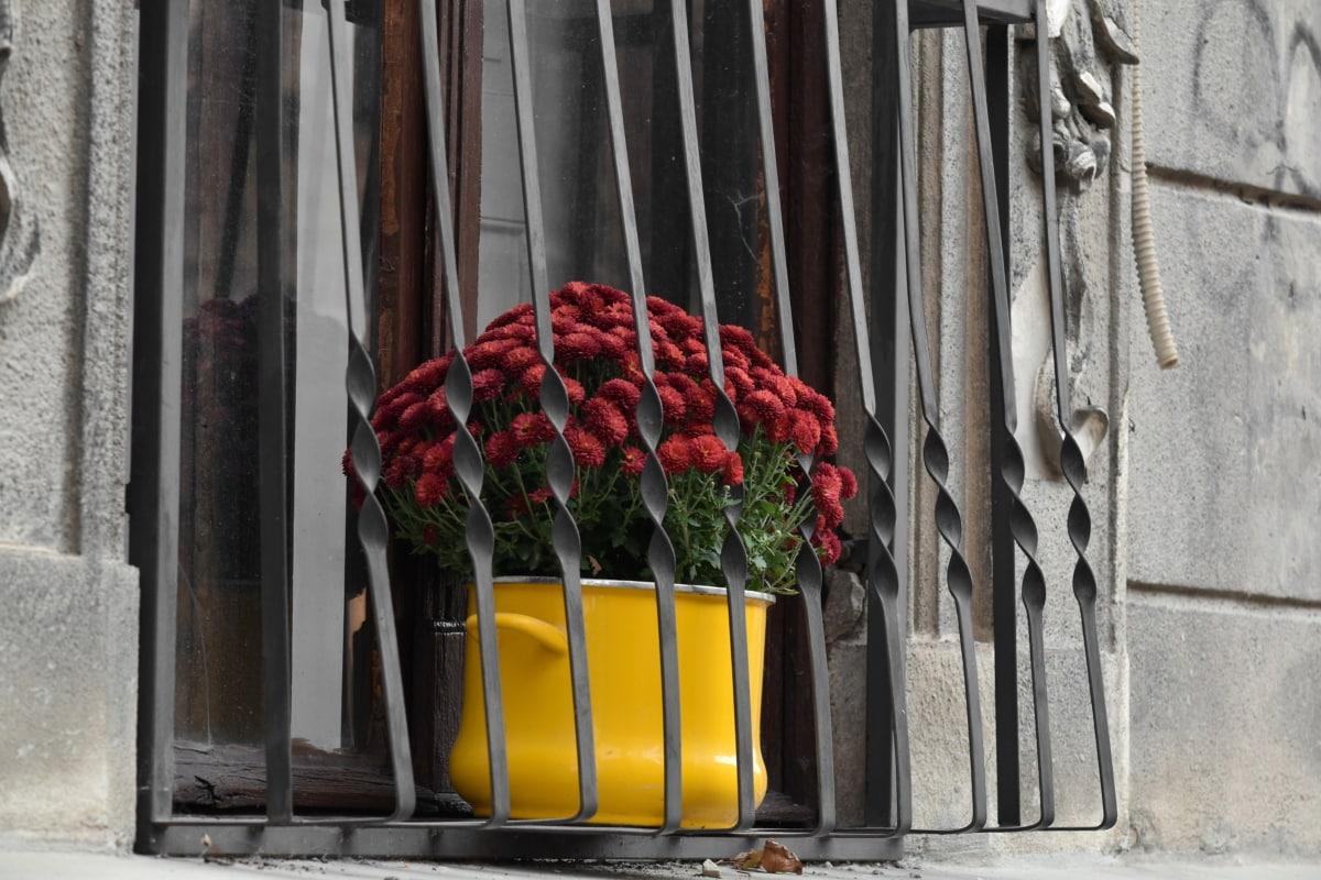decoration, facade, fence, flowerpot, window, street, architecture, flower, old, urban