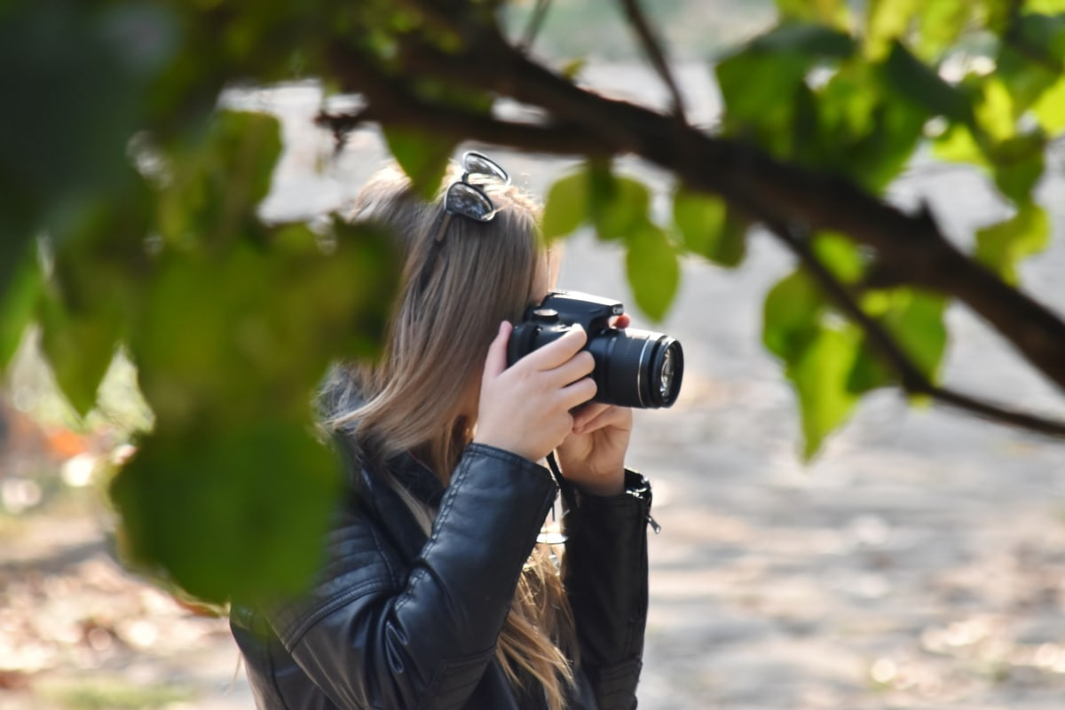 kamera, modni, park, fotograf, sa strane, priroda, na otvorenom, leća, žena, list