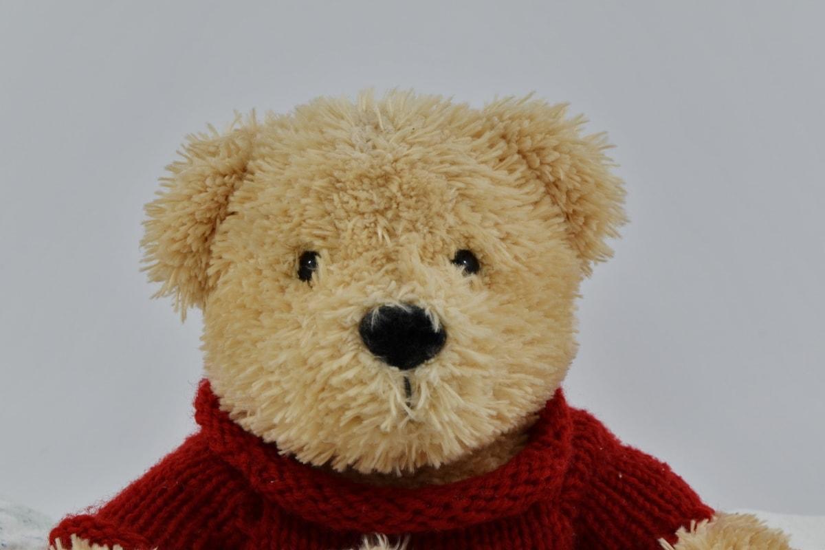 peluche, jouet, ours en peluche, Hiver, cadeau, mignon, Fourrure, laine, drôle, froide