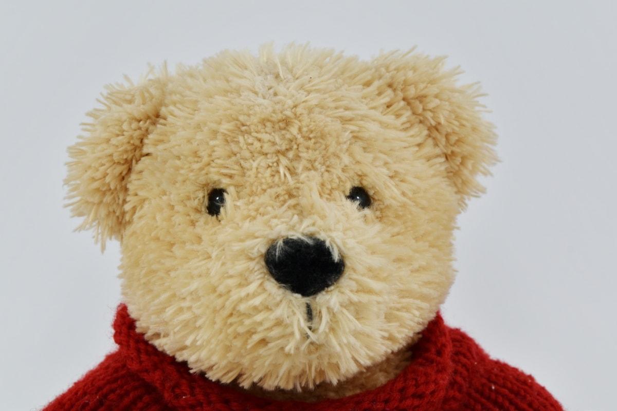 Kopf, hellbraun, Plüsch, ausgestopft, Teddybär Spielzeug, Spielzeug, Liebe, Geschenk, niedlich, Bär