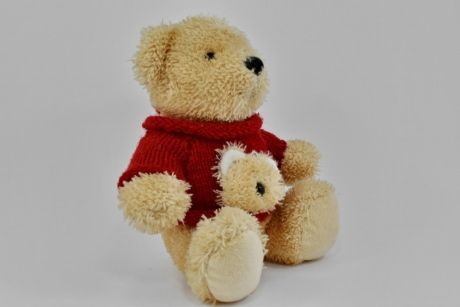 object, single, teddy bear toy, toy, soft, gift, love, cute, fur, traditional