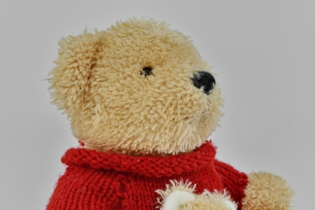 knitwear, plush, side view, sweater, teddy bear toy, toys, wool, gift, toy, bear