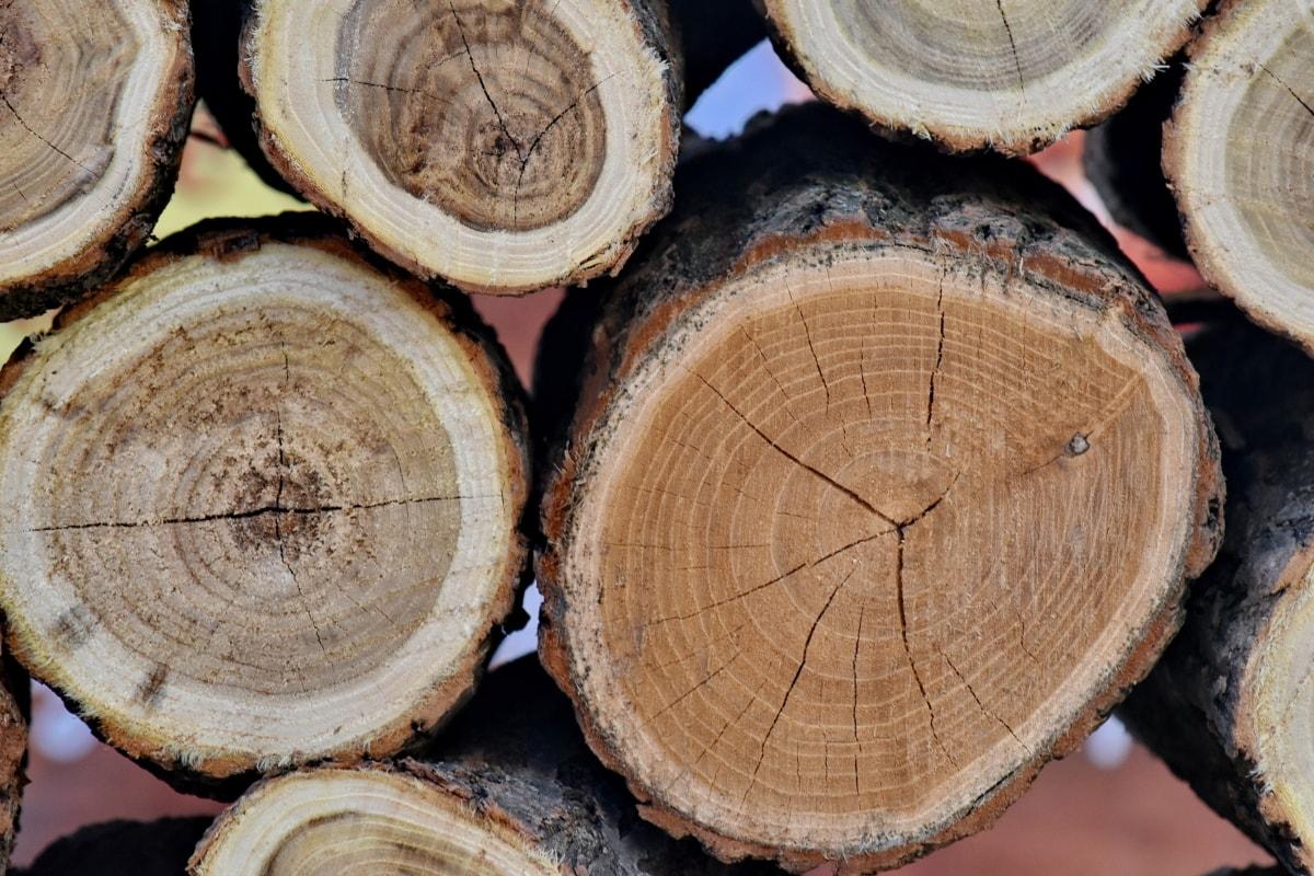 madeira, porta-malas, casca, lenha, árvore, indústria, natureza, rodada, pilhas, de madeira