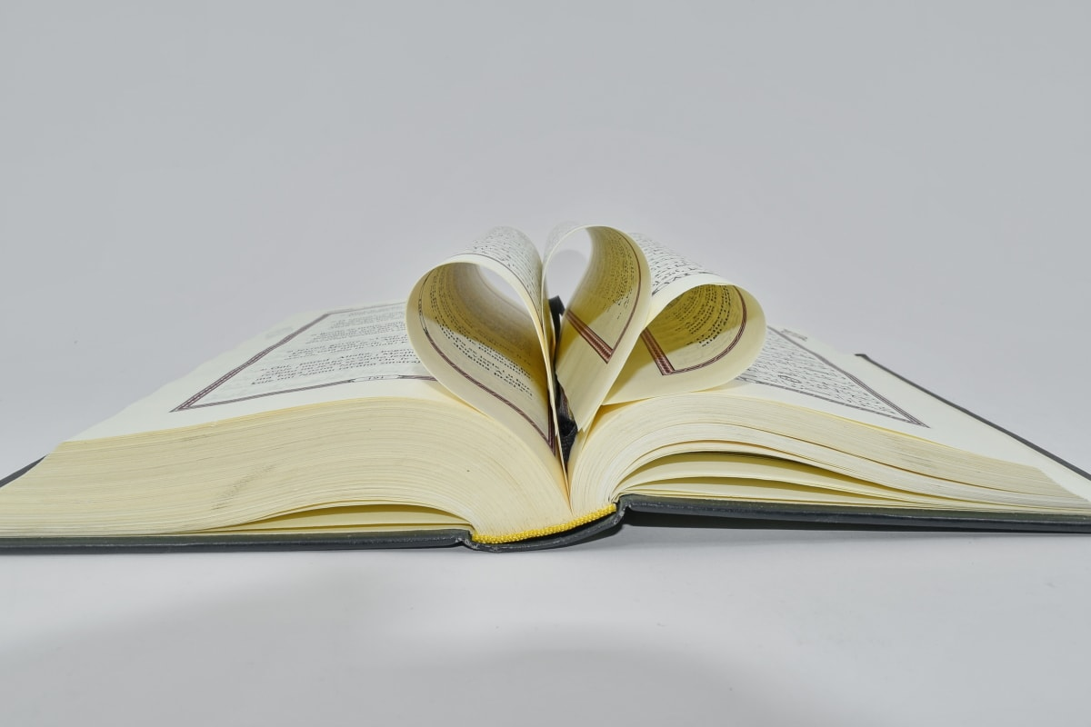 book, detail, information, page, research, side view, knowledge, wisdom, literature, education