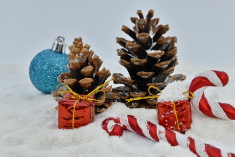 candy, conifers, gifts, snowflakes, cone, winter, tree, christmas, celebration, snow