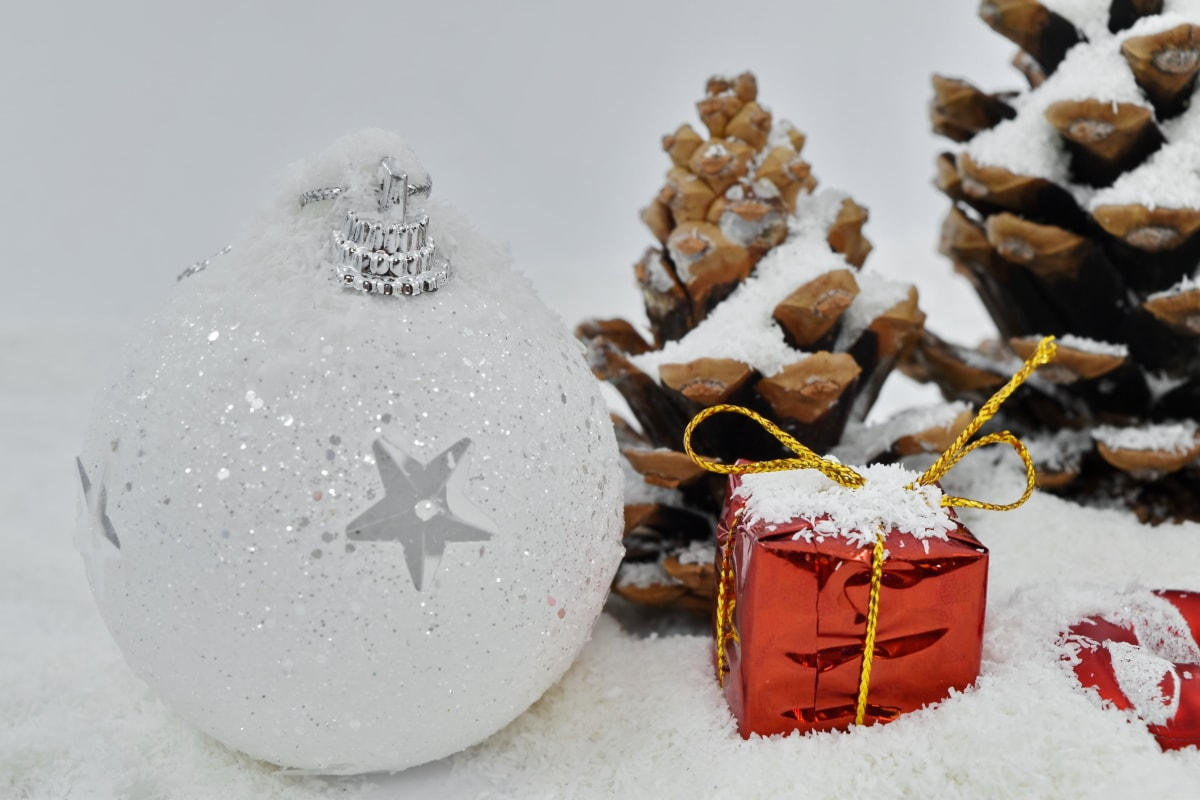 christmas, snow, winter, frost, cold, snowflake, tree, celebration, decoration, shining