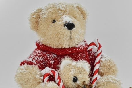 teddy bear toy, bear, gift, cute, toy, christmas, snow, winter, scarf, traditional