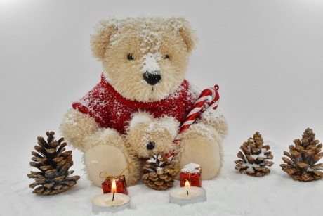 decoration, toy, christmas, teddy bear toy, snow, gift, bear, cold, celebration, tree
