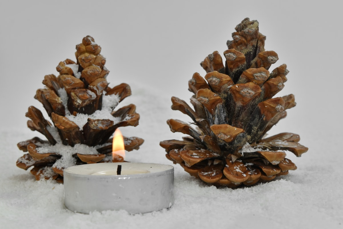 conifers, seed, snowflakes, wooden, blur, brown, candle, candlelight, celebration, christmas