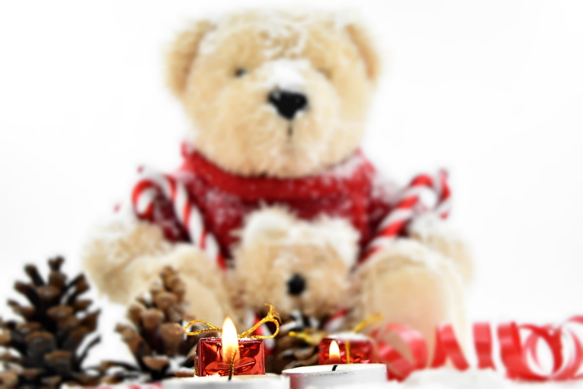 candlelight, candles, christmas, conifers, decorative, gifts, ribbon, teddy bear toy, animal, bear