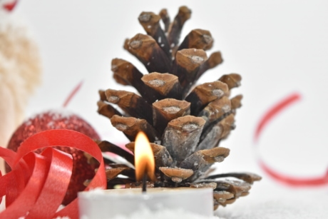 candle, candlelight, christmas, conifer, decoration, still life, blur, bright, brown, celebration